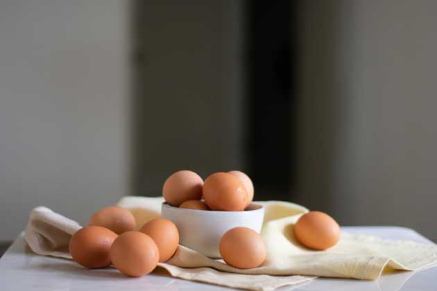 Egg Source of protein